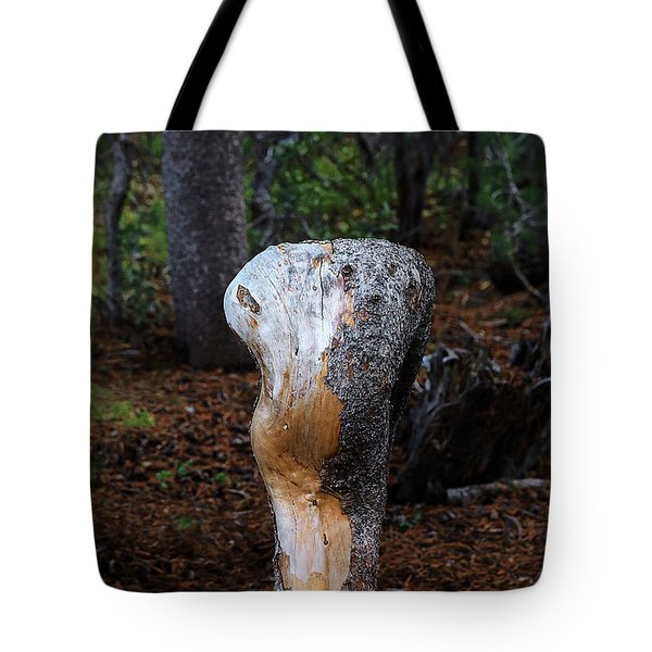 Made By Nature Seen By Man Tote Bag