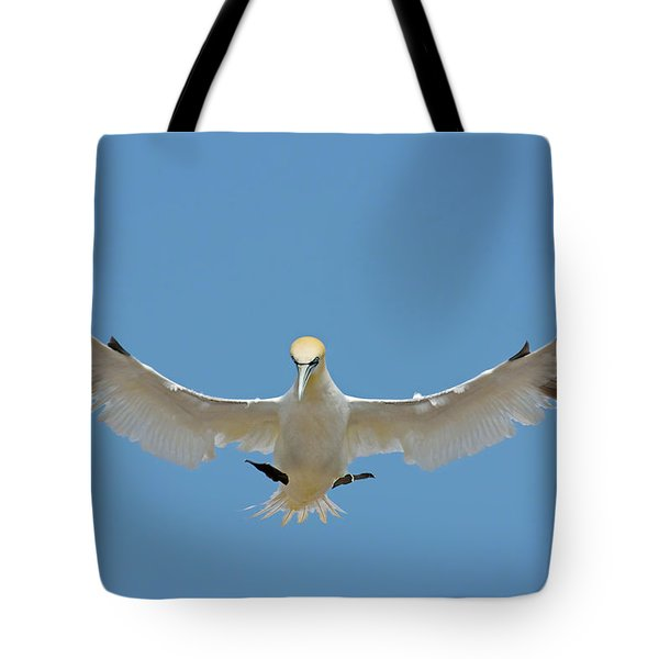 Maestro Tote Bag by Tony Beck