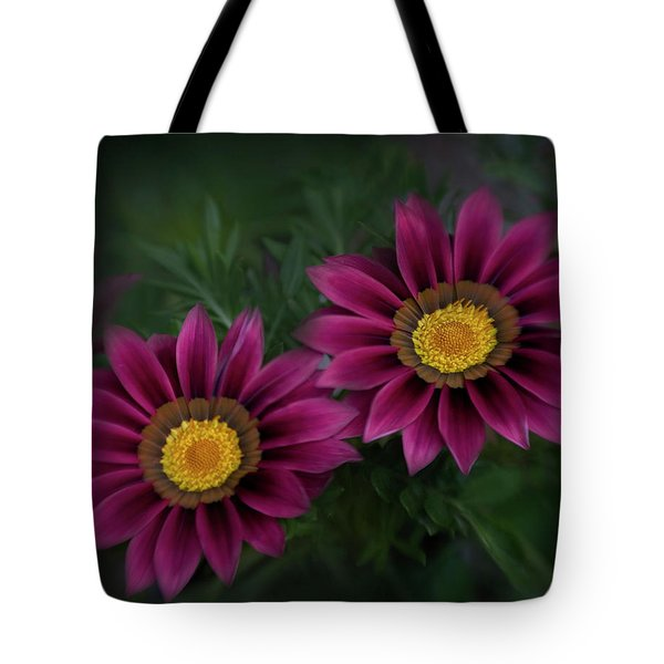 Tote Bag featuring the photograph Magenta African Daisies by David and Carol Kelly