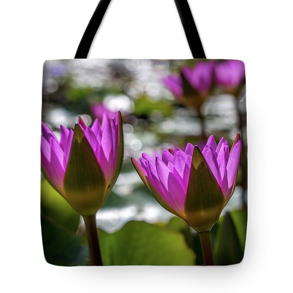 Magenta Water Lilies Tote Bag