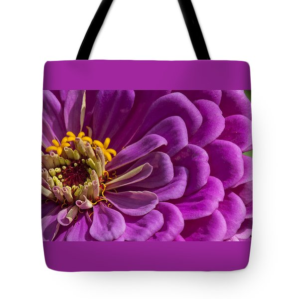 Magenta Zinnia Tote Bag