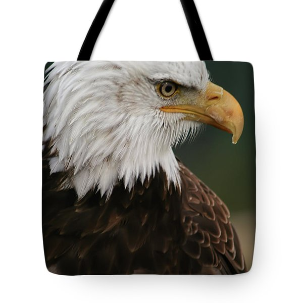 Magestic Eagle Tote Bag