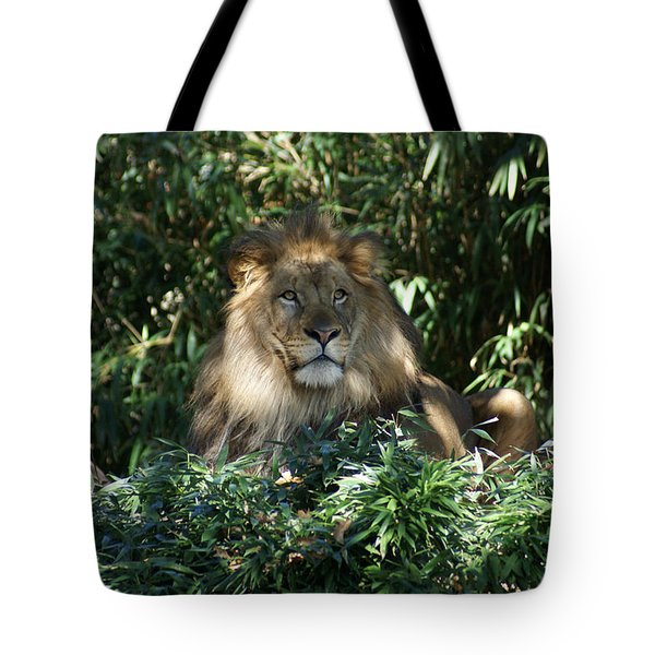 Magestic Lion Tote Bag