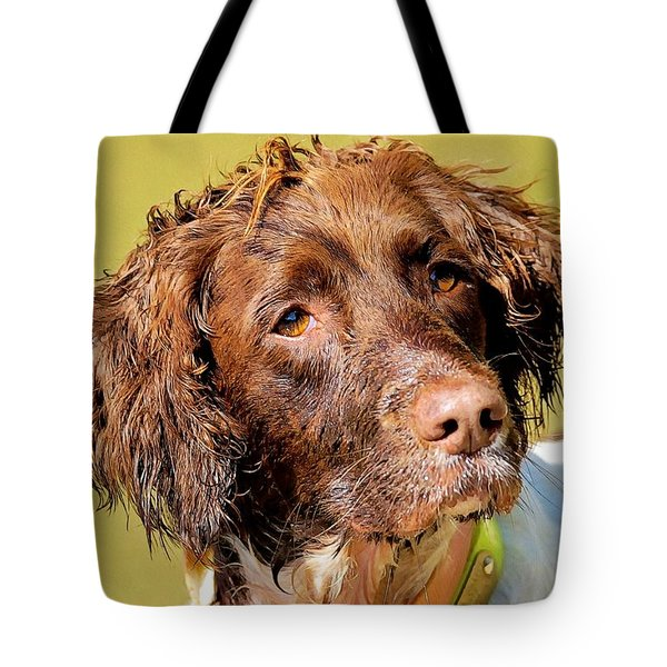 Tote Bag featuring the photograph Maggie Head Photo Art by Constantine Gregory