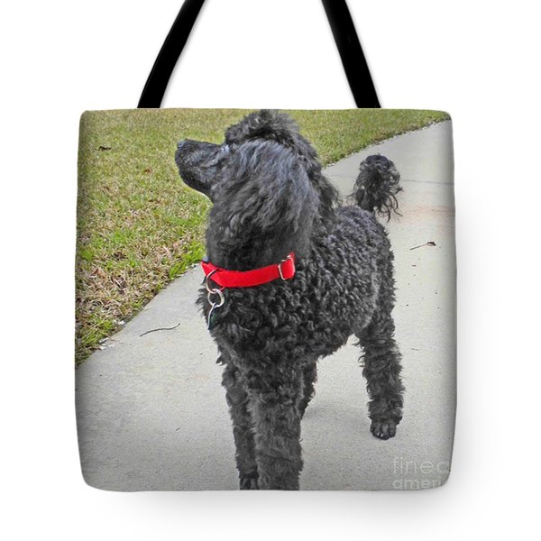 Maggie On Bird Watch Tote Bag