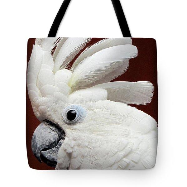 Maggie The Umbrella Cockatoo Tote Bag by Bob Slitzan
