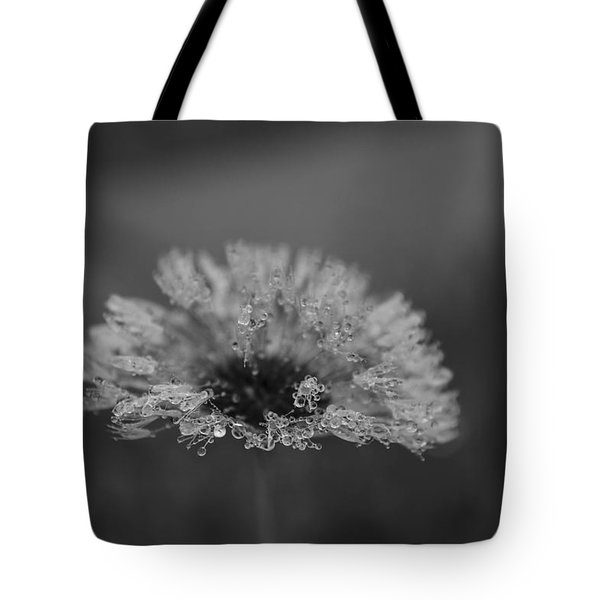 Magic Of The Dandelion Lotus 444 Tote Bag