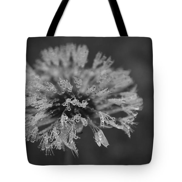 magic of the lotus Dandelion 430 Tote Bag