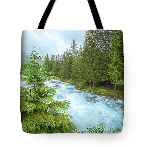Magic Tote Bag by Rose-Maries Pictures