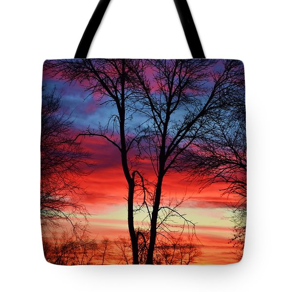 Magical Colors In The Sky Tote Bag by Dacia Doroff