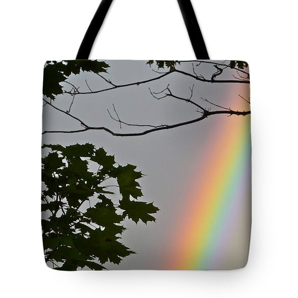 Tote Bag featuring the photograph Magical Colours by Claire Bull