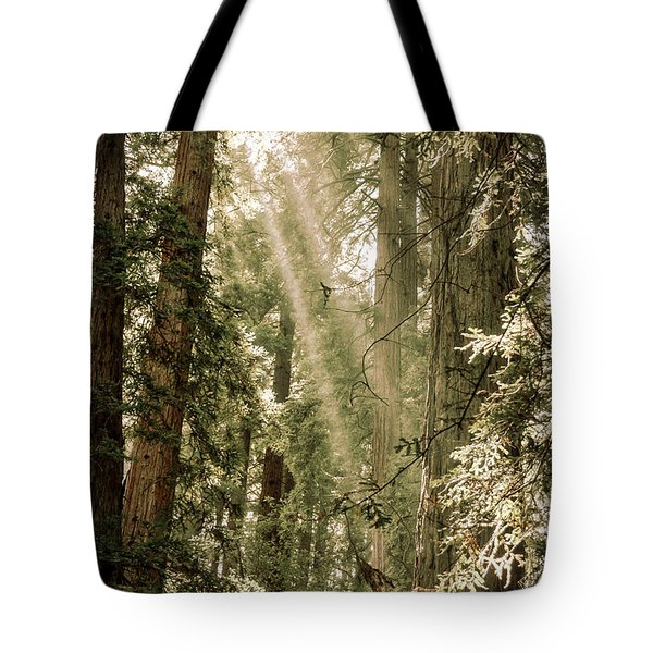 Magical Forest 2 Tote Bag