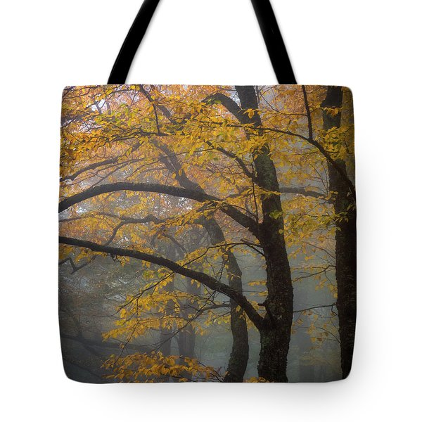 Magical Forest Blue Ridge Parkway Tote Bag
