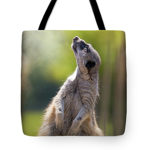 Magical Meerkat Tote Bag