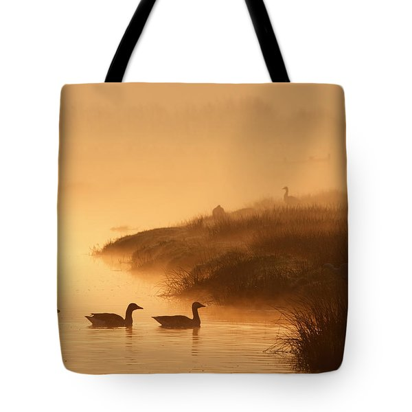 Magical Misty  Morning Tote Bag