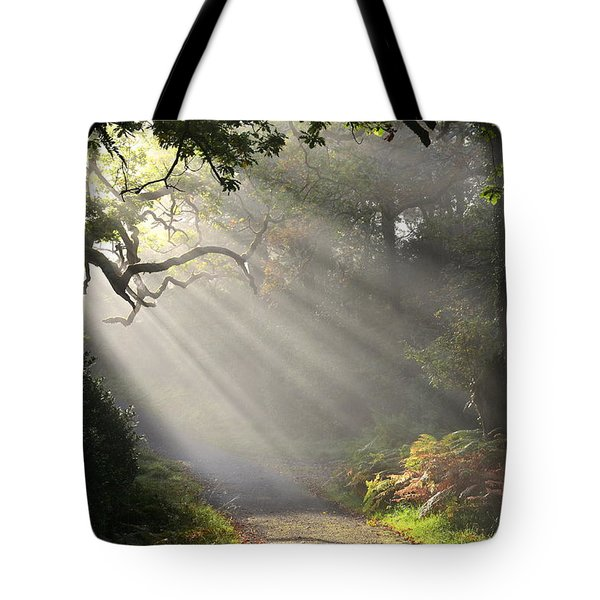 Magical Moment In The Park Tote Bag by Barbara Walsh