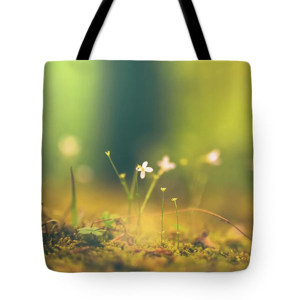 Tote Bag featuring the photograph Magical Moment by Shane Holsclaw