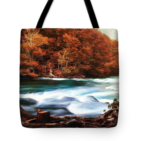 Autumnal Landscape With Lake In The Argentine Patagonia Tote Bag