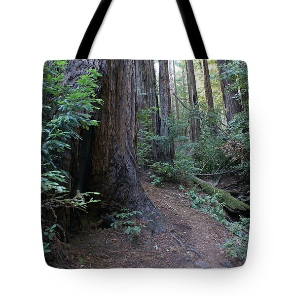 Magical Path Through The Redwoods On Mount Tamalpais Tote Bag