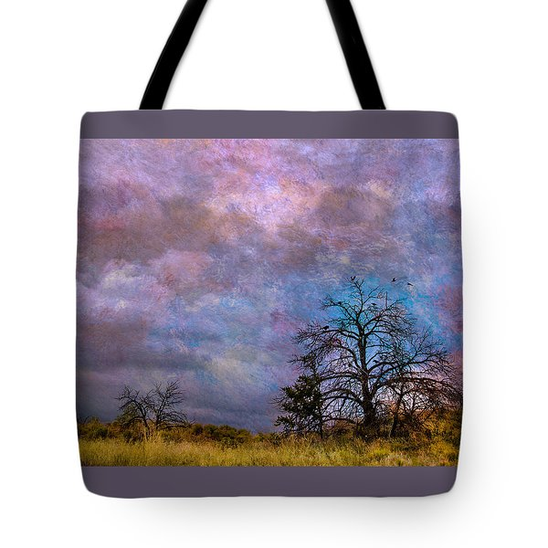 Magical Sky Tote Bag by Carolyn Dalessandro