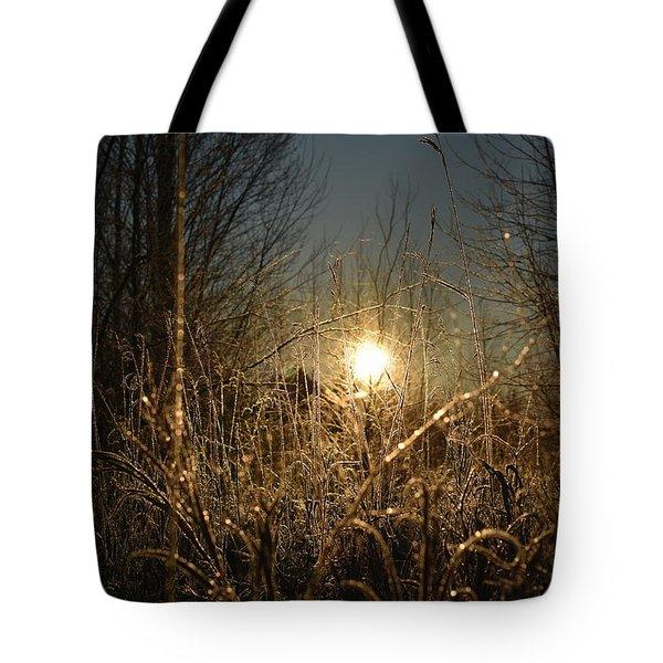 Magical Sunrise Tote Bag
