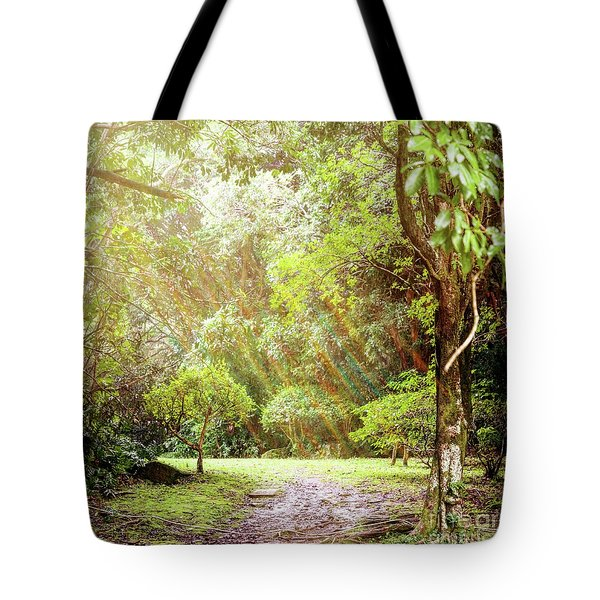 Tote Bag featuring the photograph Magical Tulgey Wood by Cindy Garber Iverson