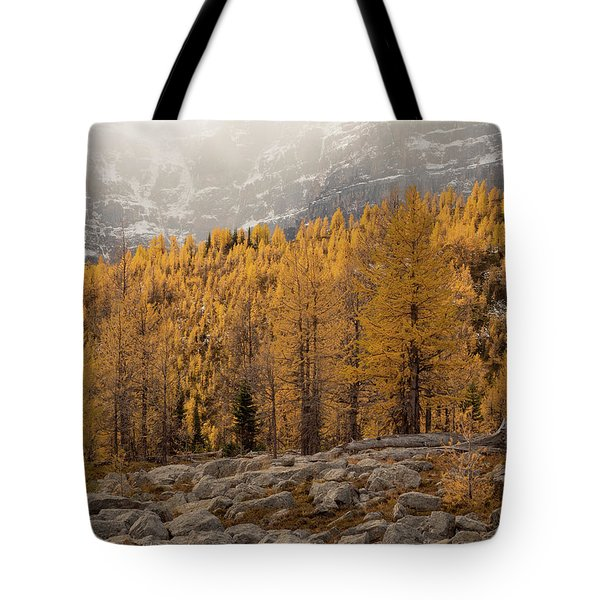 Magnificent Fall Tote Bag