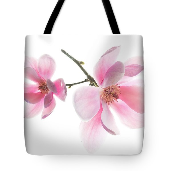 Magnolia Is The Harbinger Of Spring. Tote Bag
