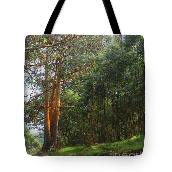 Tote Bag featuring the photograph Magnificent Maui by DJ Florek