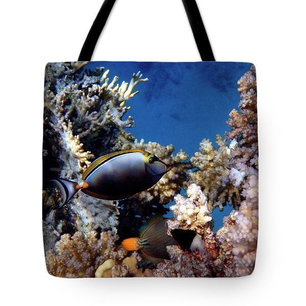 Magnificent Red Sea World Tote Bag