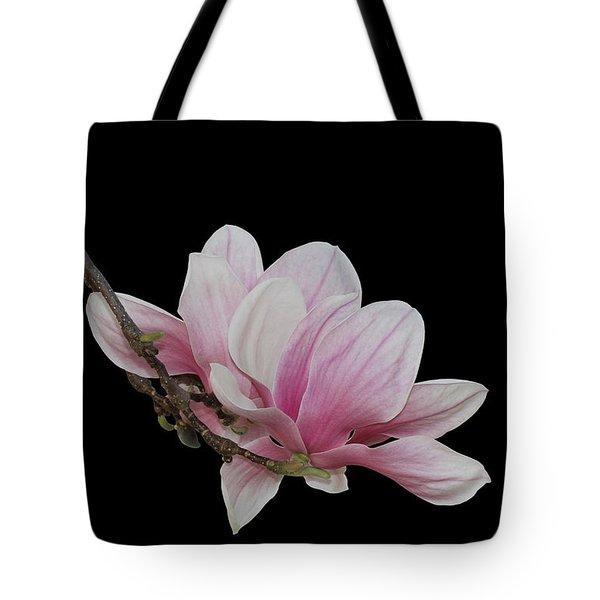 Magnolia #2 Tote Bag