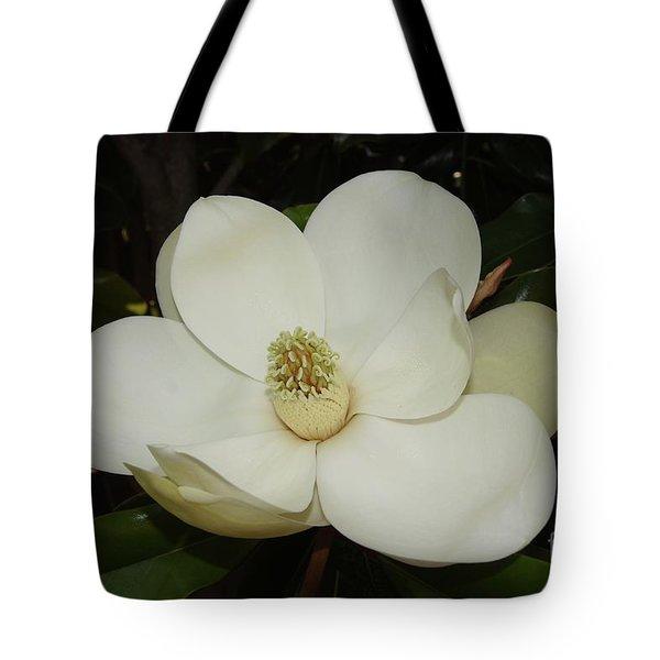 Magnolia Blossom 5 Tote Bag