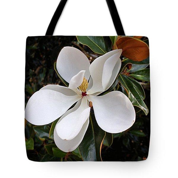 Magnolia Blossom Tote Bag by Kristin Elmquist