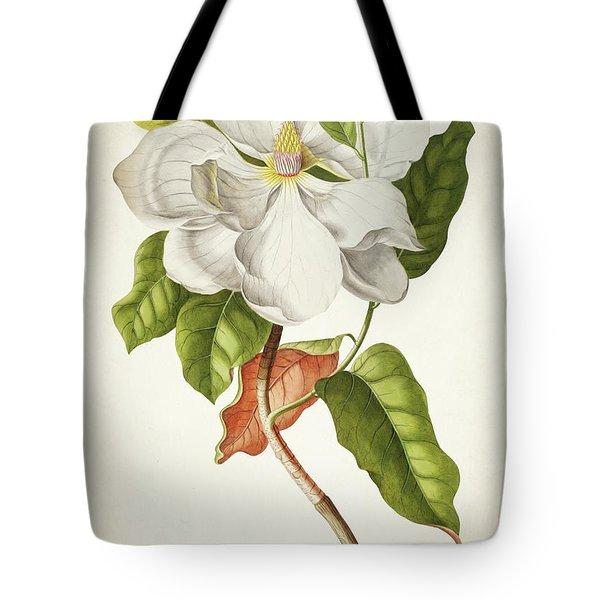 Magnolia Botanical Print Tote Bag