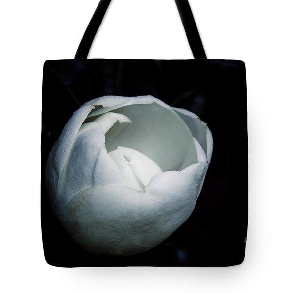 Magnolia In The Spotlight Tote Bag
