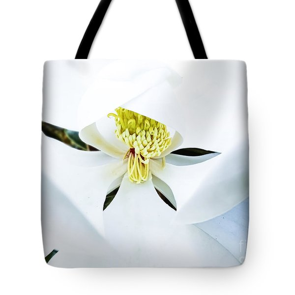 Tote Bag featuring the photograph Magnolia by Melissa Messick