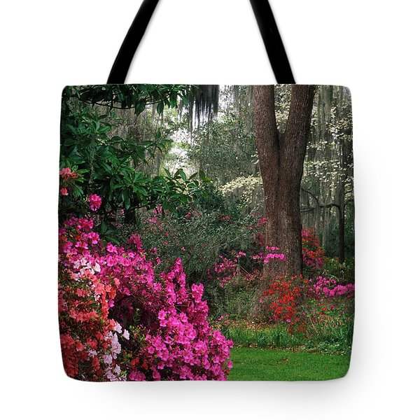 Tote Bag featuring the photograph Magnolia Plantation - Fs000148a by Daniel Dempster