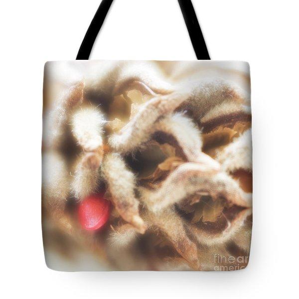 Tote Bag featuring the photograph Magnolia Seedpod by Elena Nosyreva