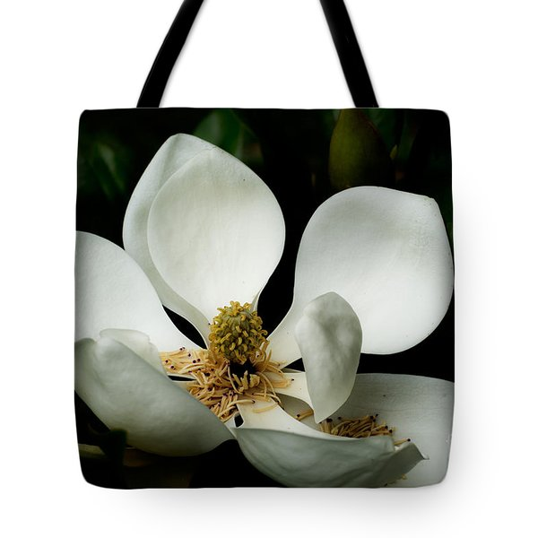 Magnolia Time Tote Bag