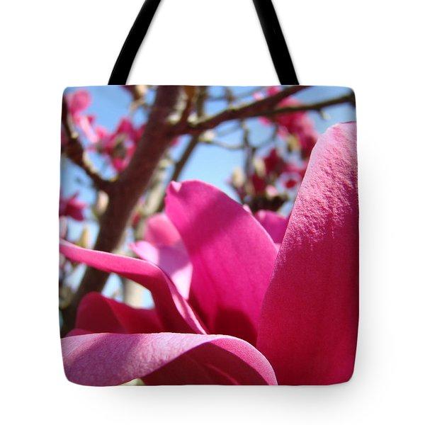 Magnolia Tree Pink Magnoli Flowers Artwork Spring Tote Bag by Baslee Troutman