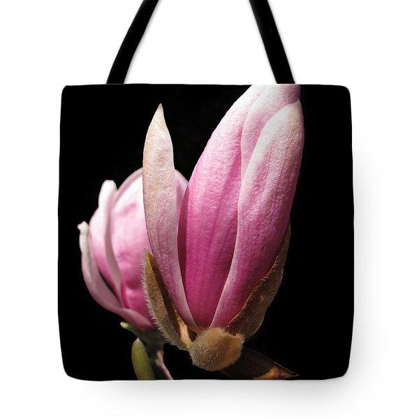 Magnolia Tulip Tree Blossom Tote Bag
