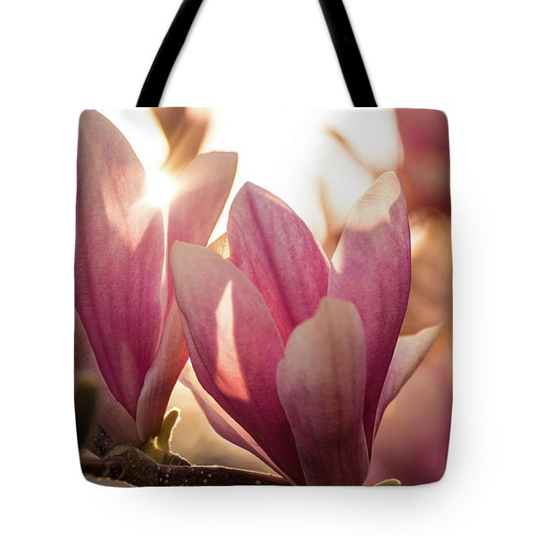 Magnolias At Sunset Tote Bag
