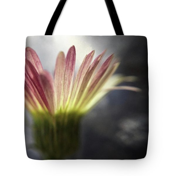 Magritte's Drop Tote Bag