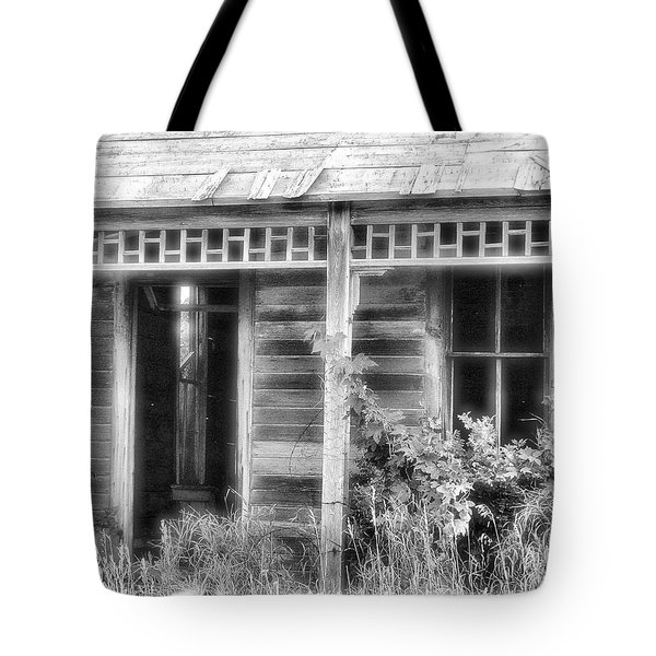 Tote Bag featuring the photograph Maiden History 2 by Susan Kinney