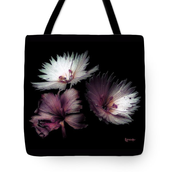 Maiden  Mother Crone Tote Bag by RC deWinter