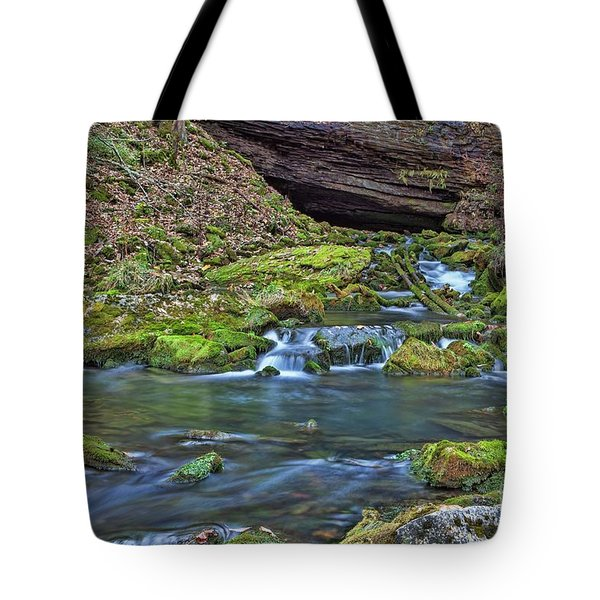 Maiden Springs Tote Bag