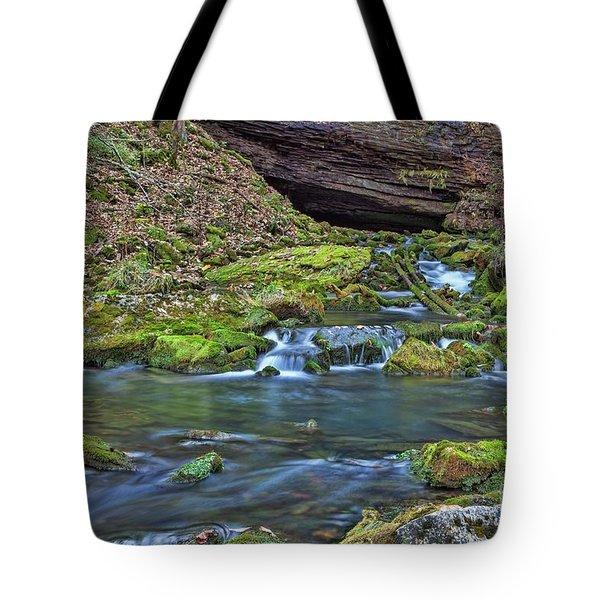 Maiden Springs Tote Bag