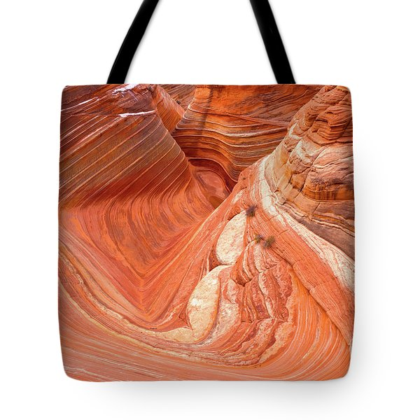 Main Wave Canyon 2017-1 Tote Bag