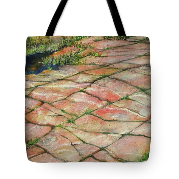 Tote Bag featuring the painting Maine Coast Lines by Susan Herbst