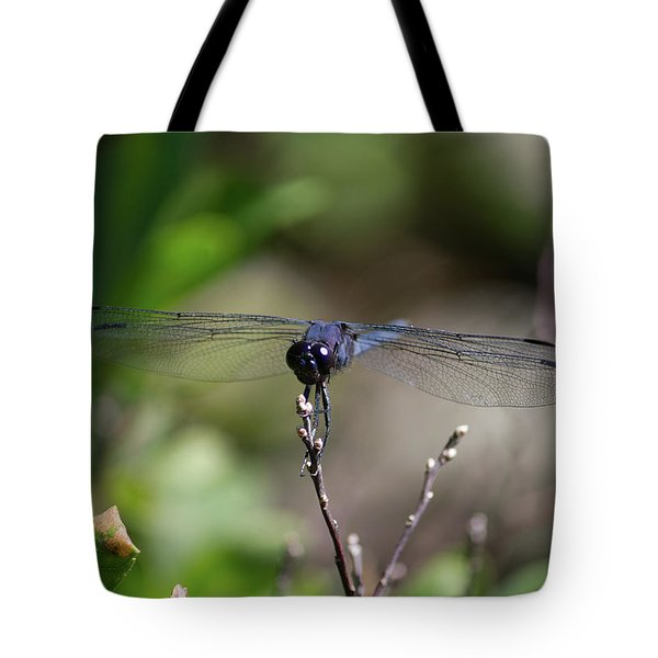 Maine Dragonfly Tote Bag